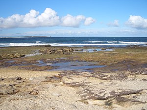 Shelly Beach (Cronulla) - View of Shelly Beach looking east towards Bate Bay