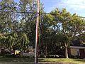 Sherman Oaks, Los Angeles, CA, USA - panoramio (108).jpg