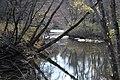 Shoal Creek (3) (5164673394).jpg