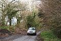 Shute, Roman road - geograph.org.uk - 290335.jpg