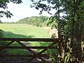 Site of former Brinsley Colliery - geograph.org.uk - 46210.jpg