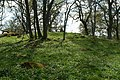 Skånings-Åsaka 35-1 - KMB - 16001000112904.jpg