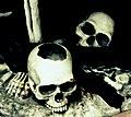 Skullz - Flickr - Stiller Beobachter.jpg