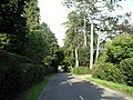 Slines Oak Road, Woldingham CR3 - geograph.org.uk - 48609.jpg
