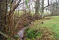 Small stream by the Quantock Greenway - geograph.org.uk - 1656632.jpg