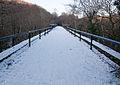 Snow on Cann Viaduct.jpg