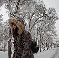 Snowy January day of Tehran (81169).jpg