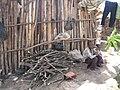 Solio Settlement-4.jpg