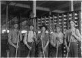 Some of the sweepers in a cotton mill. North Carolina. - NARA - 523115.tif