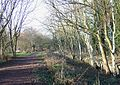 South Staffordshire Railway Walk, Himley Station - geograph.org.uk - 633192.jpg