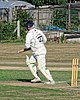 Southwater CC v. Chichester Priory Park CC at Southwater, West Sussex, England 085.jpg