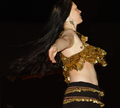 Spinning Dancer.png