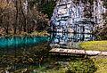Spring of Krupa river in Februaty (32631222440).jpg
