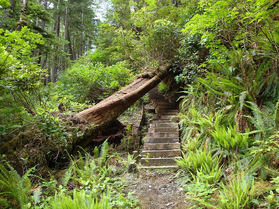 Staircase North Coast Trail