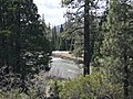 Stanislaus National Forest, Pinecrest, United States May 07, 2017 113129.jpeg