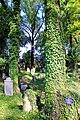 Stary cmentarz żydowski w Cieszynie34.JPG