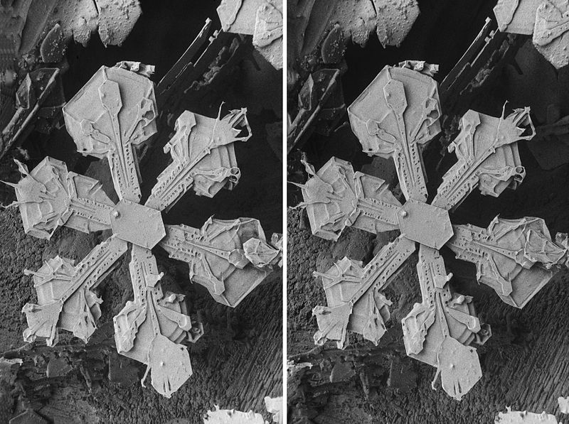 Fil:Stereo snow crystals.jpg