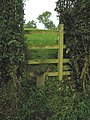 Stile on Brock Hill, Leicestershire - geograph.org.uk - 64653.jpg