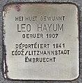 Stolperstein für Leo Hayum (Remich).jpg