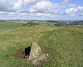 Stones in a rough grazing field - geograph.org.uk - 258006.jpg