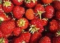 Strawberry textures.jpg