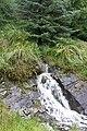 Stream in Lettershanbally forest - geograph.org.uk - 967447.jpg
