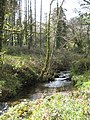 Stream in the woods at Ponjeravah - geograph.org.uk - 760740.jpg