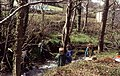 Students measuring the Afon Hen just by the main road - geograph.org.uk - 123856.jpg