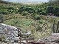 Subindo a Serra - panoramio (5).jpg