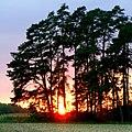 Sunset - Flickr - Stiller Beobachter (2).jpg