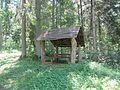 Suvieko sen., Lithuania - panoramio (21).jpg
