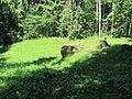 Suvieko sen., Lithuania - panoramio (26).jpg