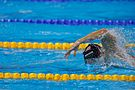 Swimming 4x100m freestyle relay 2017-08-07 20.jpg