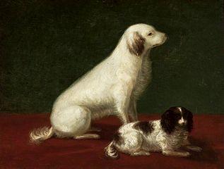 Dwa psy: Miskon i Medorek