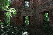 Szymonki Ruiny klasztoru 10.JPG