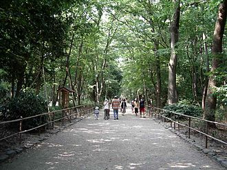 "Kamo Shrine - This pathway leads through Tadasu no Mori (the ""Forest Where Lies are Revealed"")."