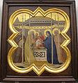 Taddeo gaddi, storie di cristo e di s. francesco (armadio di s. croce), 1335-40 ca. 05 presentazione.JPG