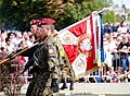 Tag der polnischen Streikräfte (48616166233).jpg