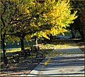 Take a Walk, Oak Glen, CA 11-17-13b (11518391426).jpg