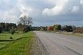 Tallinna–Paldiski maantee Valkse külas.jpg