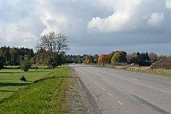 Tallinna-Paldiski maantee Valkse külas.jpg