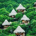 Thatched Roofs (Sierra Nevada de Santa Marta, Colombia).jpg