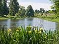 The Arboretum - Arboretum Lake - geograph.org.uk - 1066892.jpg