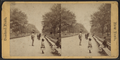 The Mall, from Robert N. Dennis collection of stereoscopic views.png