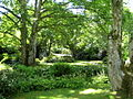 The garden - Lanhydrock - geograph.org.uk - 1351015.jpg