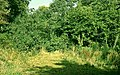The old Scarva line near Banbridge (4) - geograph.org.uk - 1122119.jpg