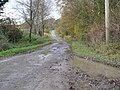 The road to Freeth Farm, Compton Bassett - geograph.org.uk - 283184.jpg