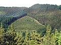 The track from Cwm Rheidol to Ystumtuen - geograph.org.uk - 461432.jpg