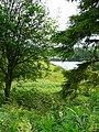 Through the trees to the Black Esk Reservoir dam - geograph.org.uk - 503800.jpg
