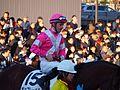 Tokyo Daishoten Day at Oi racecourse (31866436881).jpg